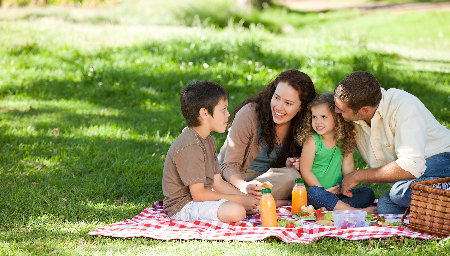 family-picnic-outdoors-meals-summer.jpg -