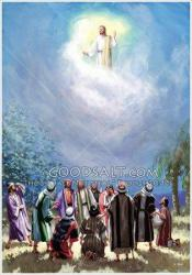 jesus-ascending-into-heaven-1 - jesus-ascending-into-heaven-1.jpg
