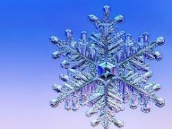 snow crystal - snow crystal.jpg