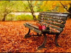 Romantic-autumn-daydreaming-18932448-1024-768.jpg -