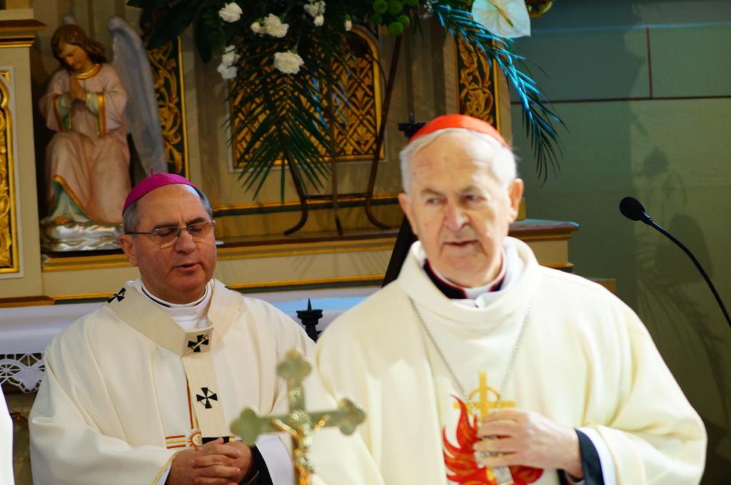 Ja3P_014_1.JPG - Kardinál Jozef Tomko